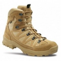 Chaussures/Rangers STEALTH PLUS GTX coyote