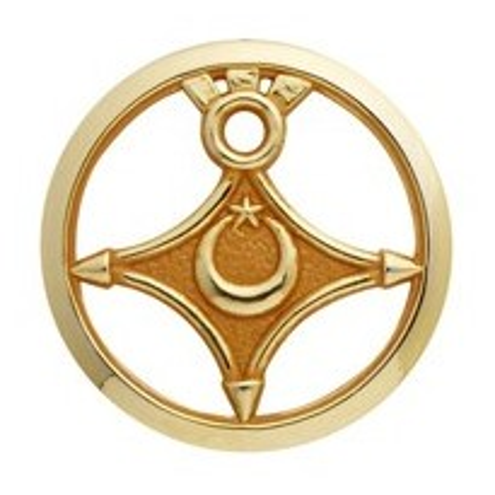 Insigne de béret doré Troupe Saharienne