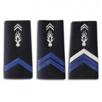 FOURREAU GENDARME ADJOINT PLASTIFIE : 03/Brigadier Chef